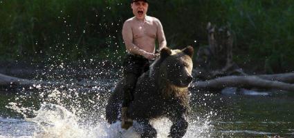 bottas orso